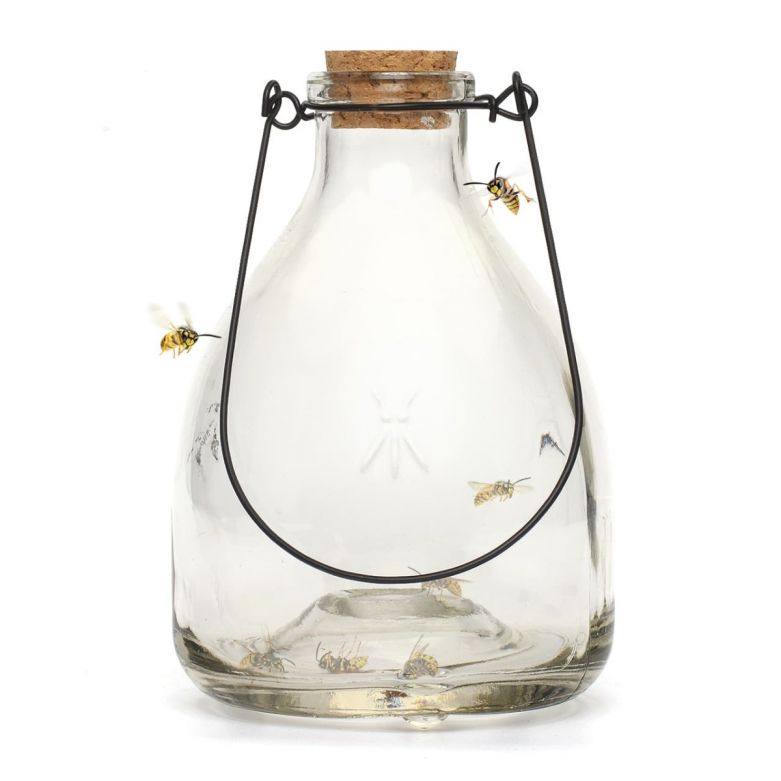 Clear Glass Wasp Trap with Metal Hanger
