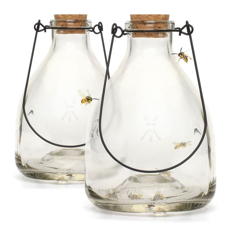 Wasp Traps (Clear Glass with Metal Hanger) (Set of 2)